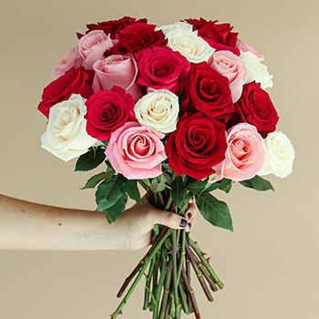 Rainbows of Love Valentines Day Roses