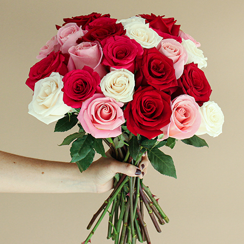 Rainbow of Love Valentine's Day Roses