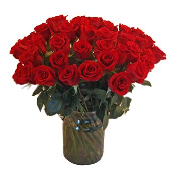 36 Long Stemmed Roses Valentine S Day Gift Arrangement