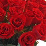 Gift Bouquet 36 Long Stemmed Roses Valentine's Day