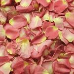 Peach Dried Rose Petals