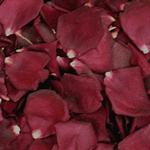 Burgundy Dried Rose Petals