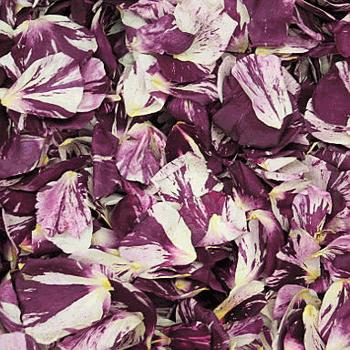 Lavender Dried Rose Petals