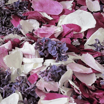 Peony and Lilac Dried Petal Blend