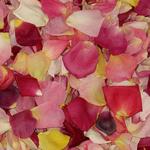Dried Real Rose Petals Mixed