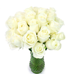 White Rose Fresh Cut