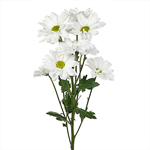 White Bulk Novelty Daisy Flower