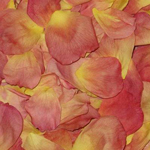 Amber Dried Rose Petals