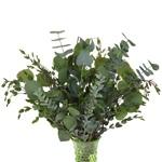 Fresh Ecualpytus Centerpiece for weddings