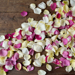 Bulk Dried Rose Petals Grey Knights