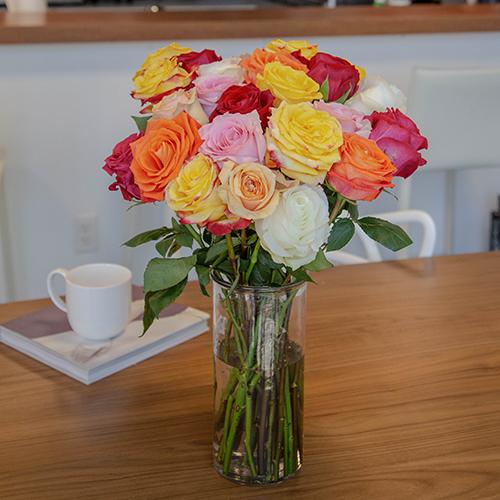 Farm Fresh Cut European Rainbow Roses For Your House