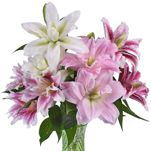 Mother's Day color rose lily wholesale flowers
