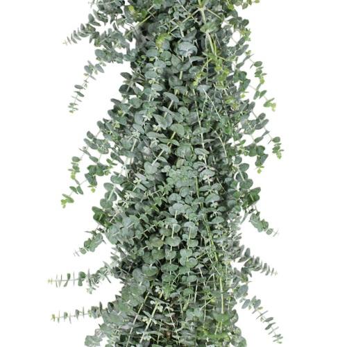 Baby Eucalyptus Garland forsale