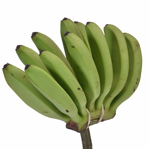 Mini Green Bananas