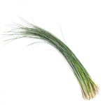 Bulk bear grass greenery sold as wholesale for delivery