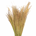 Wholesale greenery blonde love grass filler flowers sold as bulk
