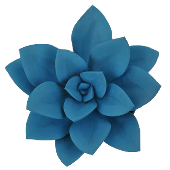 Blue Enhanced Succulent Flower