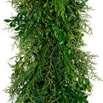 Fresh Garland Greens Plumosus Sprengeri