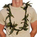 Hawaiian Lei Braided Leaf