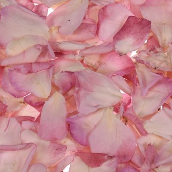 Bridal Pink Dried Rose Petals