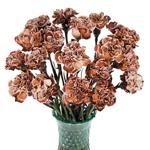Brownie Carnation Flowers In a vase