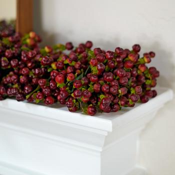 Bittersweet Burgundy Hypericum Garlands