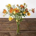 Butterfly Ranunculus Orange Wedding Flower