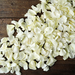 Buy Bulk Cream Rose Petals