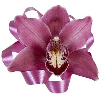 Single Orchid Corsages