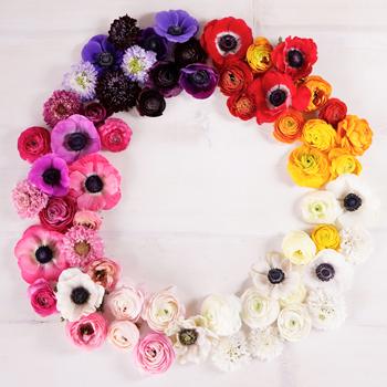 Delicate Garden DIY Flower Combo
