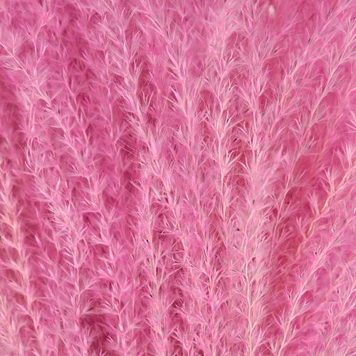 Pink Dried Eulalia Grass