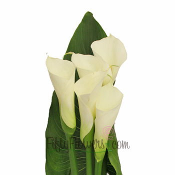 Classic Calla Lilies and Leaf Combo Grande