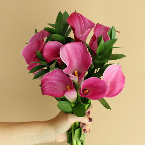 Purpleberry Mini Callas Centerpieces