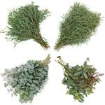 Fresh Ecualyptus Greenery Mixed Wedding Pack