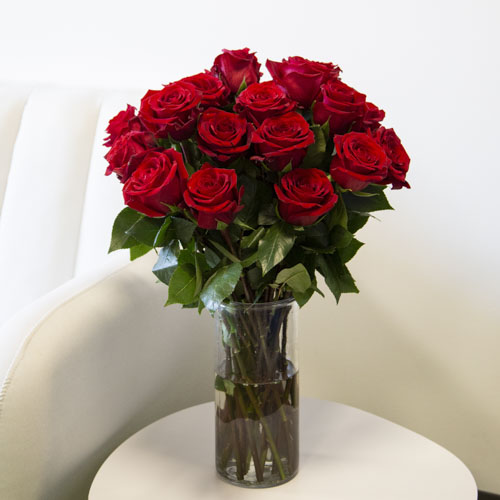 Fresh European Cut Red Roses For Your House