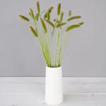 Bulk greens fresh cut foxtail millet grass filler flowers bunch designed