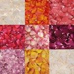 Pink Dry Rose Petals