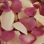 Creamy Purple Roses Petals for a wedding