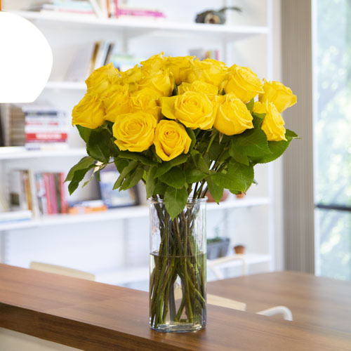 Fresh European Cut Yellow Roses For Your House
