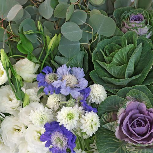Kale Garden Party DIY Flower Mix
