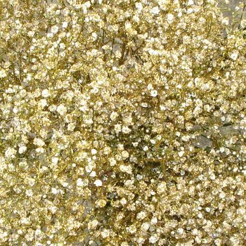 Gold Glitter Airbrushed Baby's Breath
