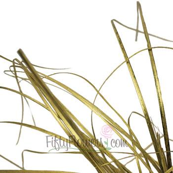 Wedding greenery gold bear grass filler flowers sold near me