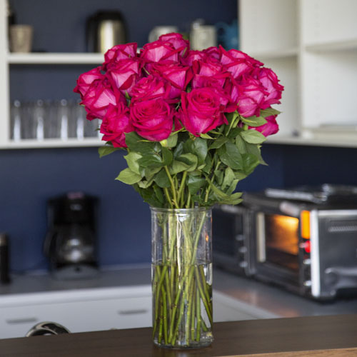Fresh European Cut Pink Roses For Your House