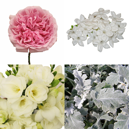 Grandmother's Garden DIY Flower Combo Pack