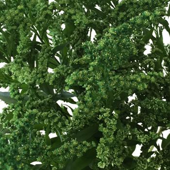 Enhanced Green Estelle Filler Flower