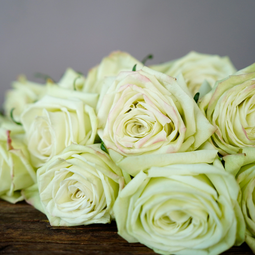 Valentines Green Rose Special