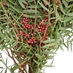 Wedding greenery hanging pepperberry bulk fall greens sold near me
