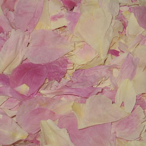 Heart Peony Dried Petals