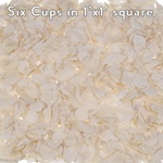 White Preserved rose Petals for Weddings