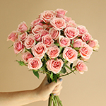 Ilse pale pink Wholesale Rose Bunch in a hand